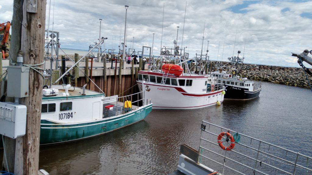 Hafen von Alma
